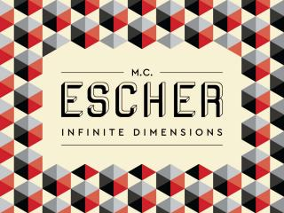 M. C. Escher: Infinite Dimensions