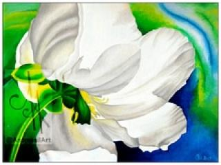 10011-wflwr - Oil Painting - White Flower