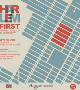 Harlem First: Mapping the Health of a Community
