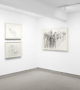 MICHAEL MAZUR: Drawings, 1959 - 2009