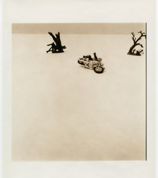 David Levinthal: Recent Acquisitions