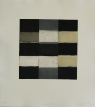 Grey Robe Sean Scully