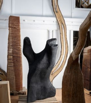 David Nash: Sculpture Through the Seasons