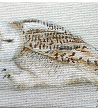 10031-mwowl - Oil Painting - Walking Owl